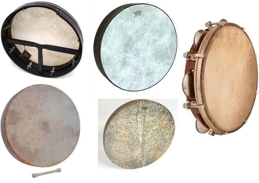 Best Bodhran Frame Drum for sale Reviews