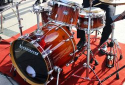 The Bass drum