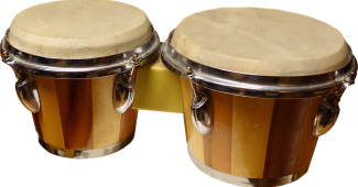 Bongo Drums history